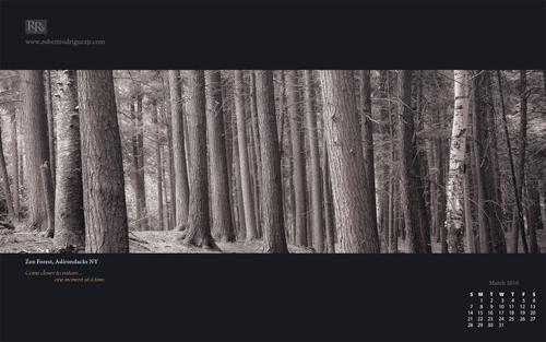 wallpaper zen. Wallpaper – Zen Forest