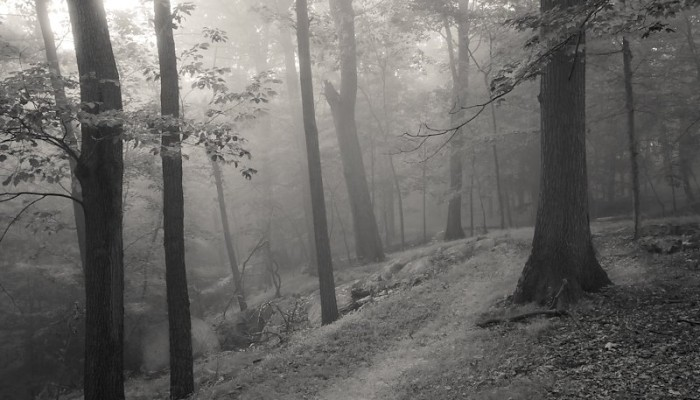 Hidden Path, Hudson Valley