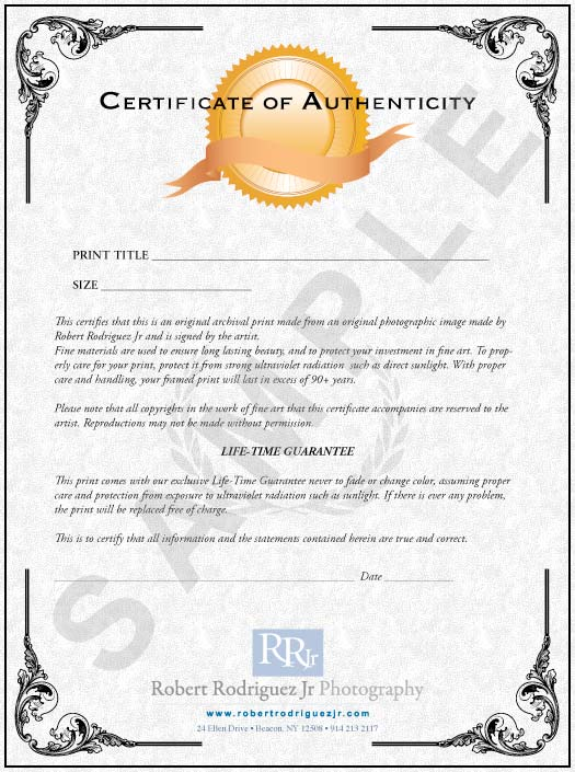 Limited edition prints robert rodriguez jr for Certificate of authenticity autograph template