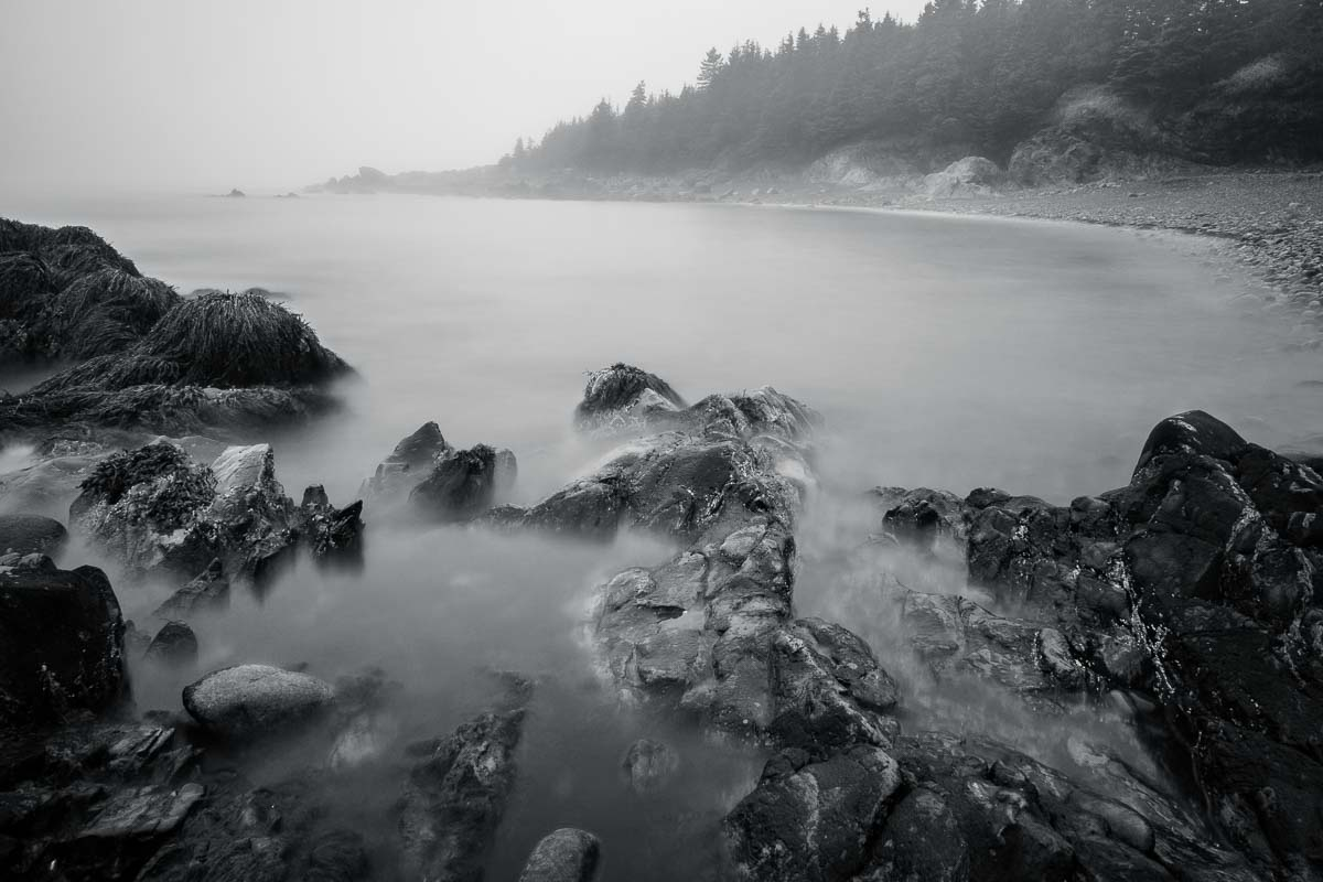 Low Tide Fog, ME