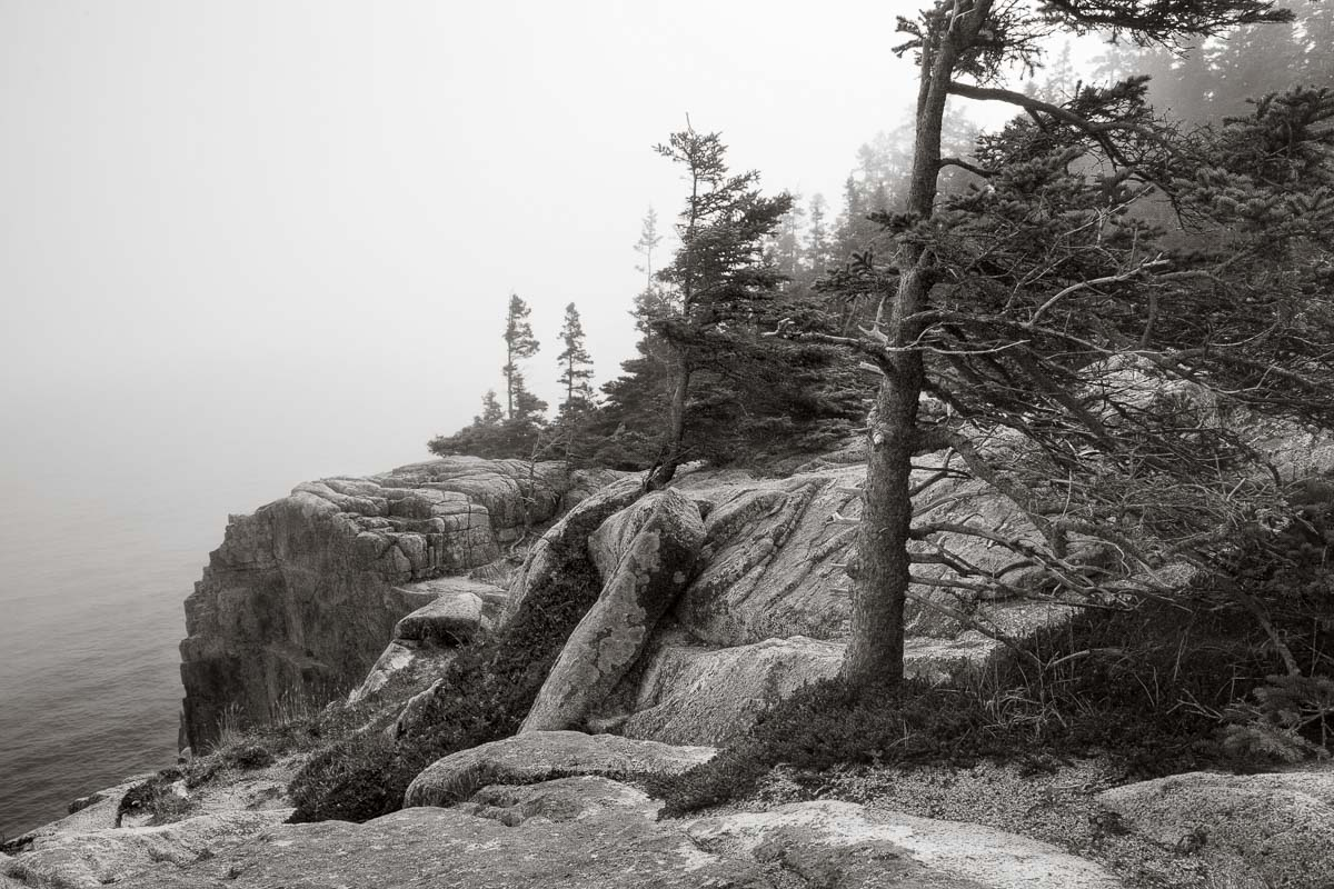 Mystery Shore, Maine
