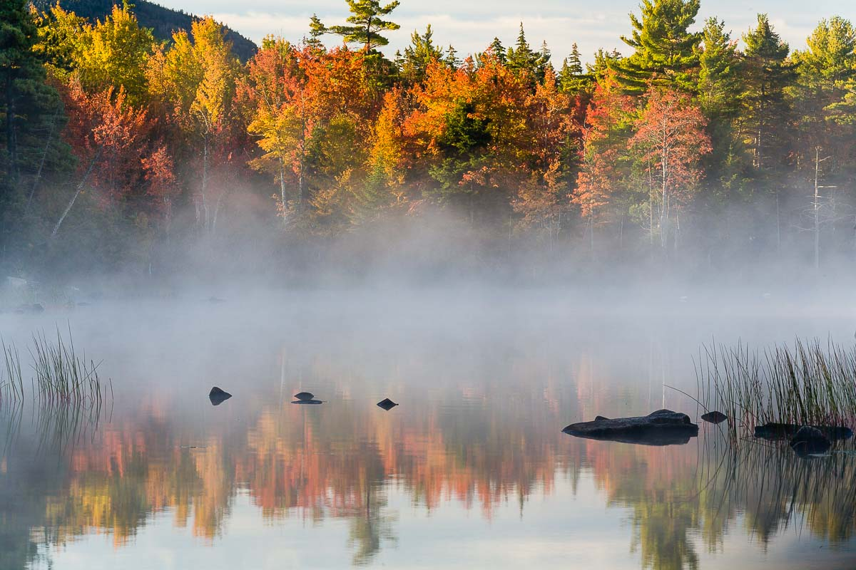 Fog Reflections, Acadia