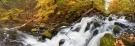 Black Creek Falls, Hudson Valley