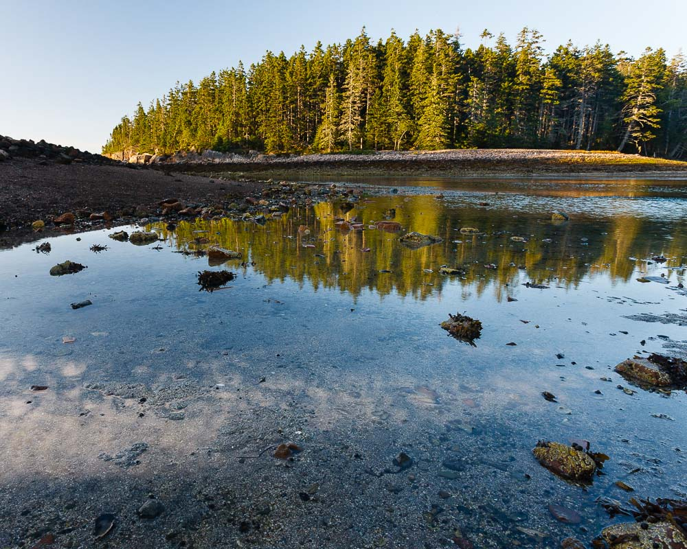 Low Tide Pools, Acadia