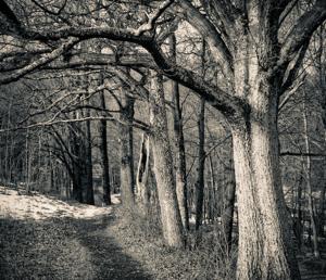 Table Rocks Trail, Mohonk Preserve