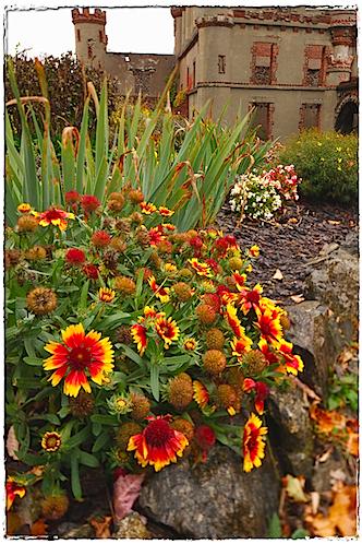 October Colors, Bannerman