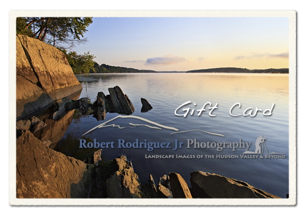 gift_card_2011