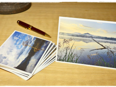 Landscapes Vol I