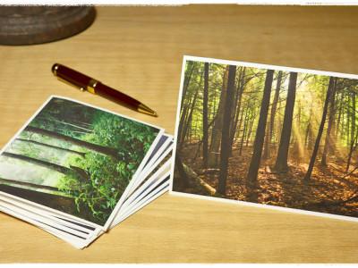Trees Vol I
