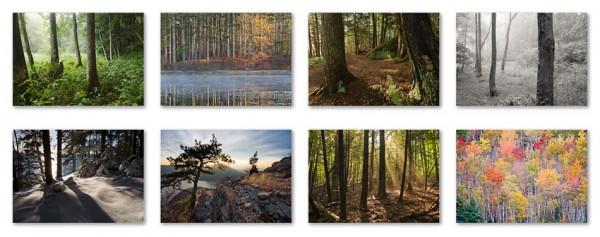trees_grid
