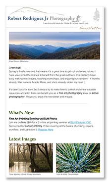 newsletter_sample2
