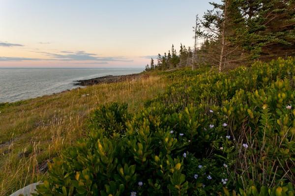 Delap Cove, NS