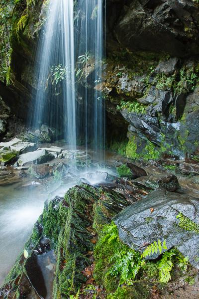 Grotto Falls, Smoky Mtns