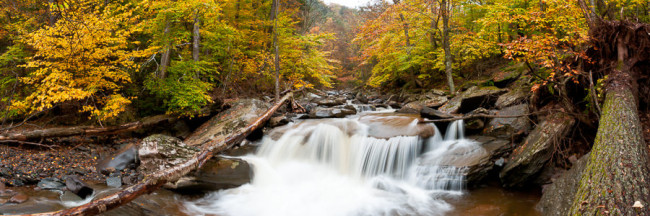 Kaaterskill Creek Falls