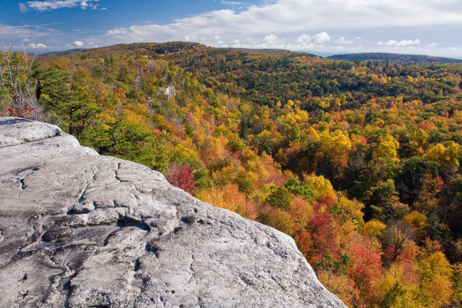 """Color Canopy"", Minnewaska SP"
