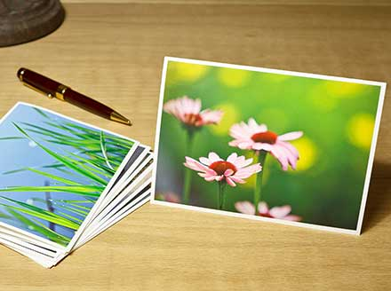 Artist Notecards