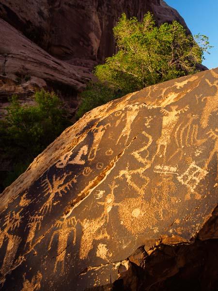 Rock Art Panel, UT / Olympus E-M1, f/8@1/30 sec, ISO 200, 24mm
