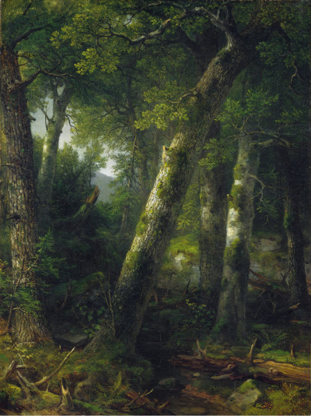 Forest In Morning Light - Asher B Durand, 1855