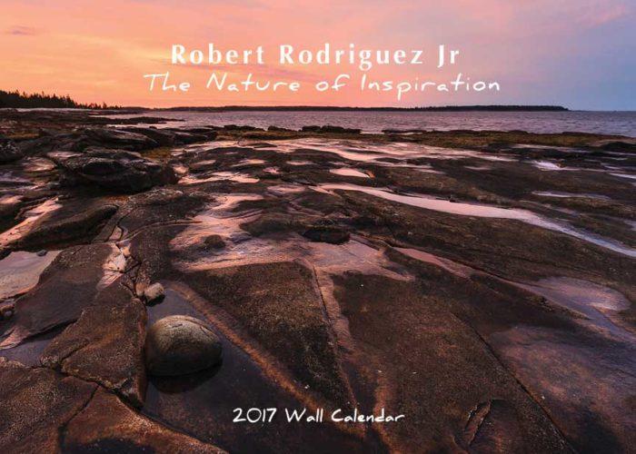 2017-calendar-cover_864px