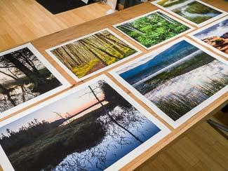 Aesthetics Of Printing