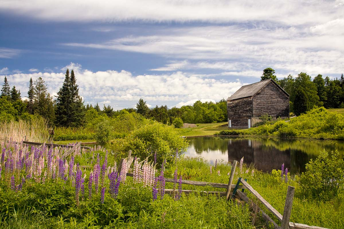 John Brown Farm, Adirondacks