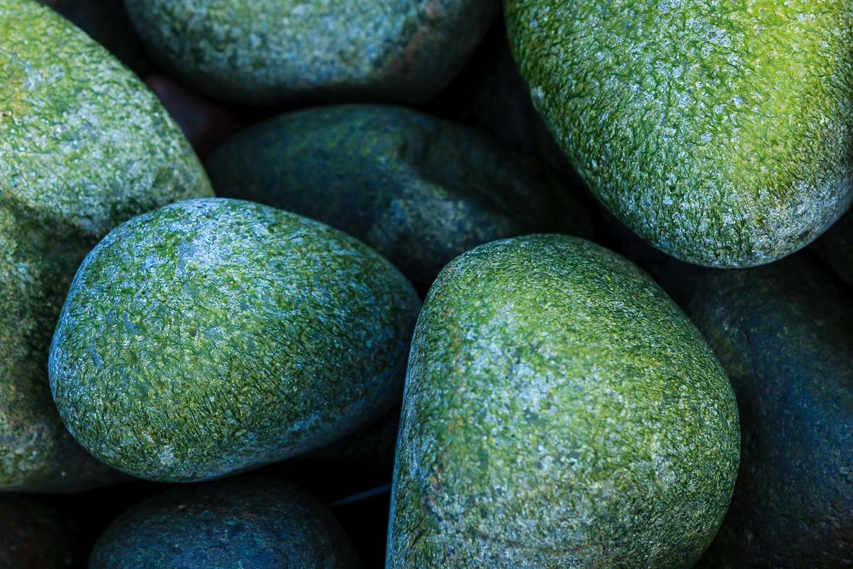 Living Rocks