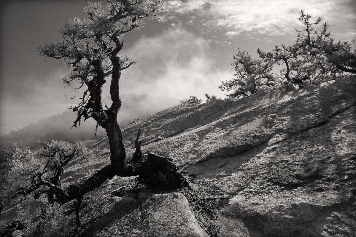 Millbrook Ridge, Mohonk Preserve