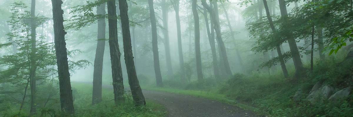 The Path, Hudson Valley