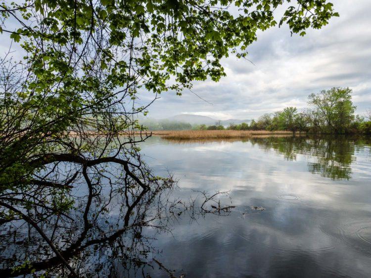 Photo Journal: Fishkill Creek, Hudson River