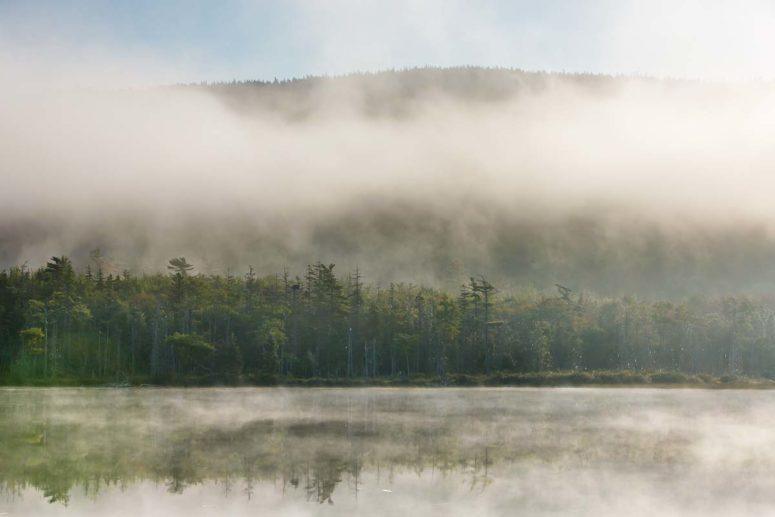 Haddock Fog, ME