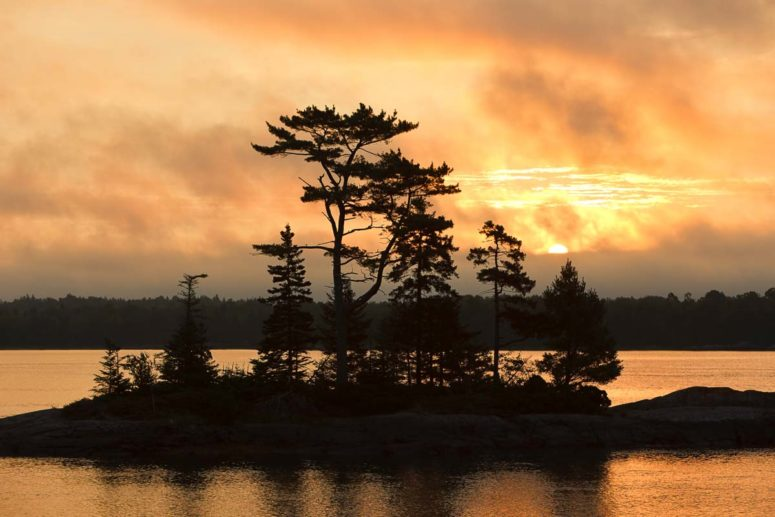 Cobscook Bay Dawn, Maine