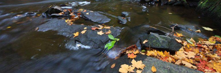 Creek Colors, Hudson Valley