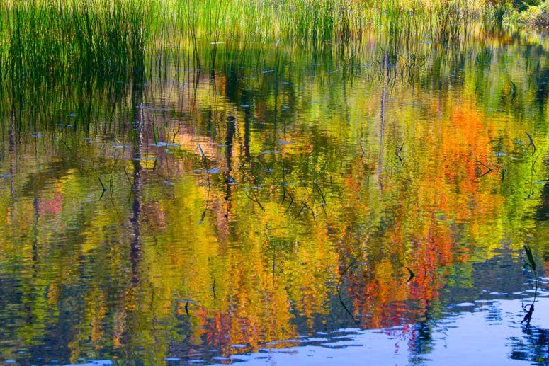 Eagle Lake Colors, Acadia