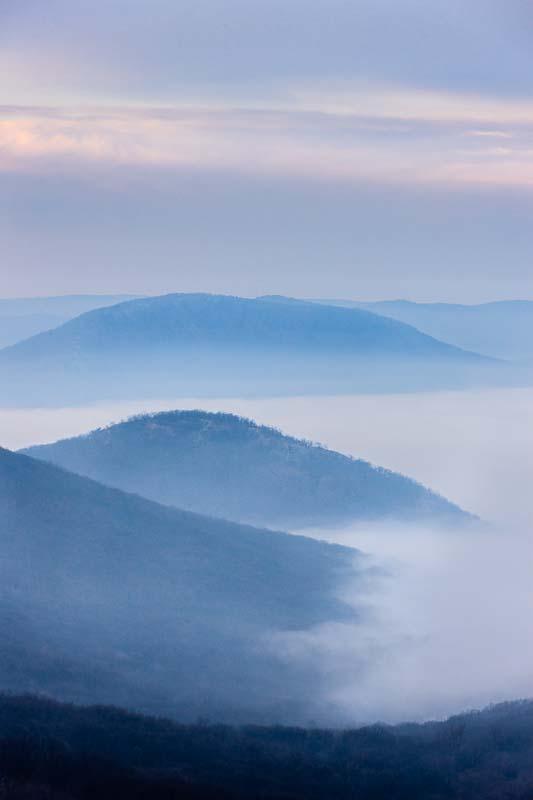 Fog Views, NY