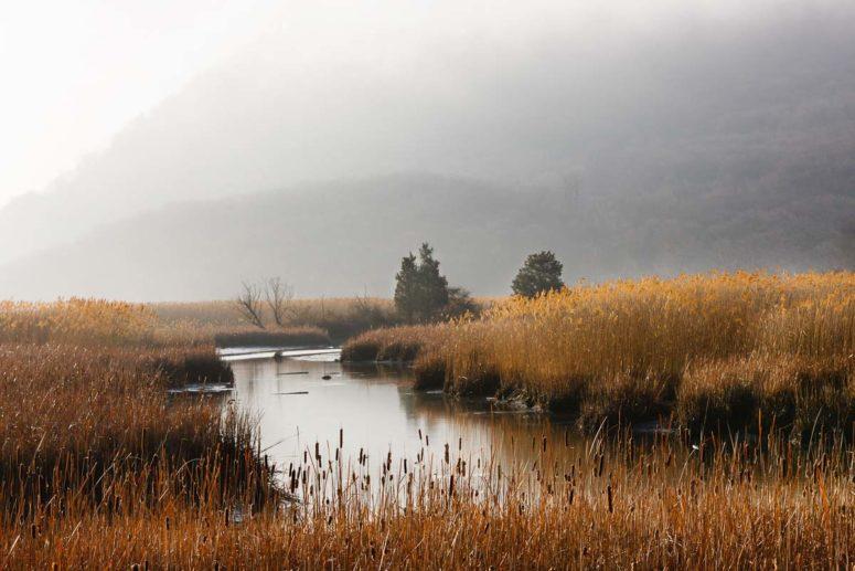 Iona Marsh, Hudson River