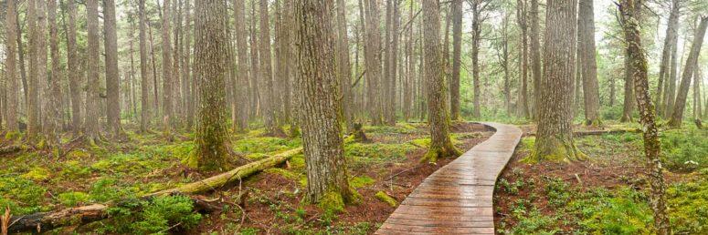 Kejimkujik Trail, Nova Scotia