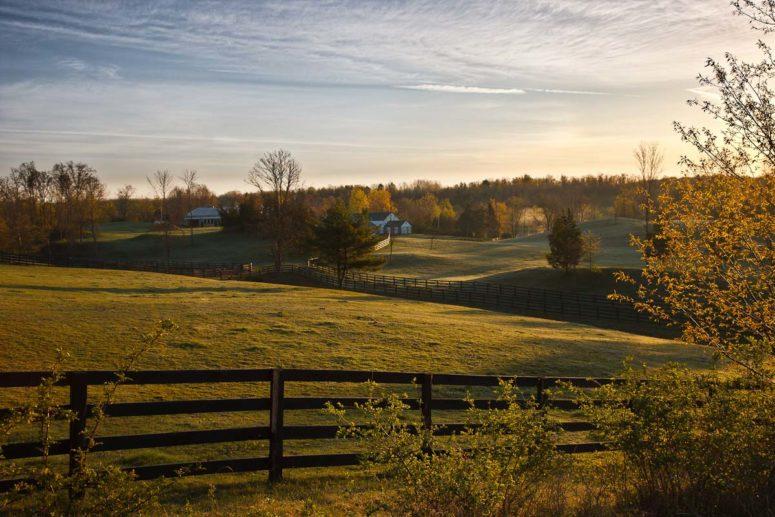 Light on the Farm, Hudson Valley