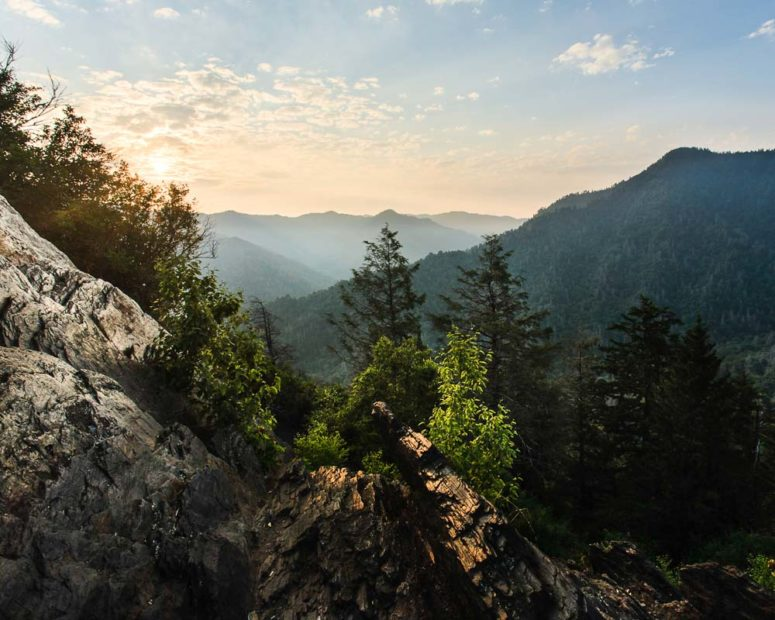 Morning Light, Smoky Mountains