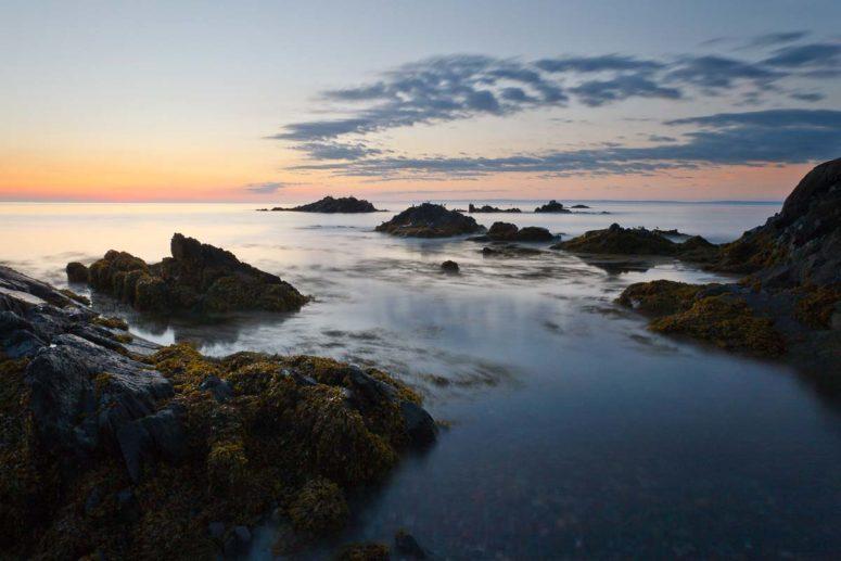 Seaforms, Maine