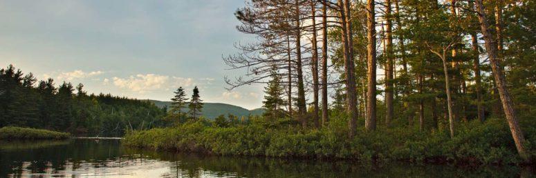 Summers Light, Adirondack Park