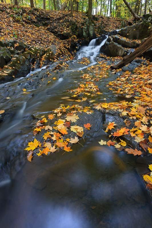 Swirling Color, Hudson Valley
