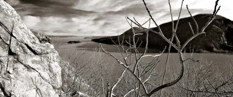 Trees and River, Hudson Valley