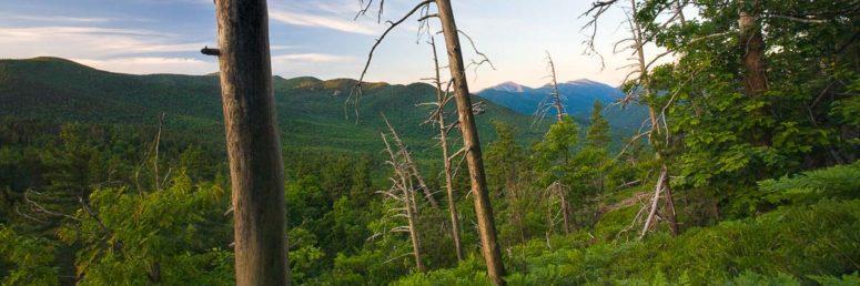 View From Baxter, Adirondacks